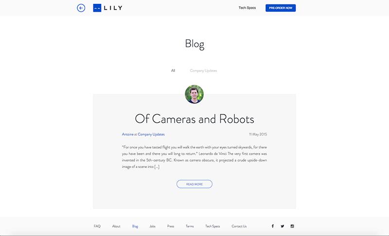 Lily Web Design
