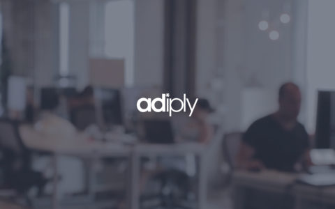 adiply Web Development Preview