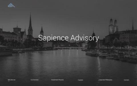 Sapience Advisory Web Development Preview