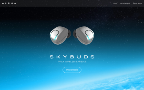 SkyBuds Web Development Preview
