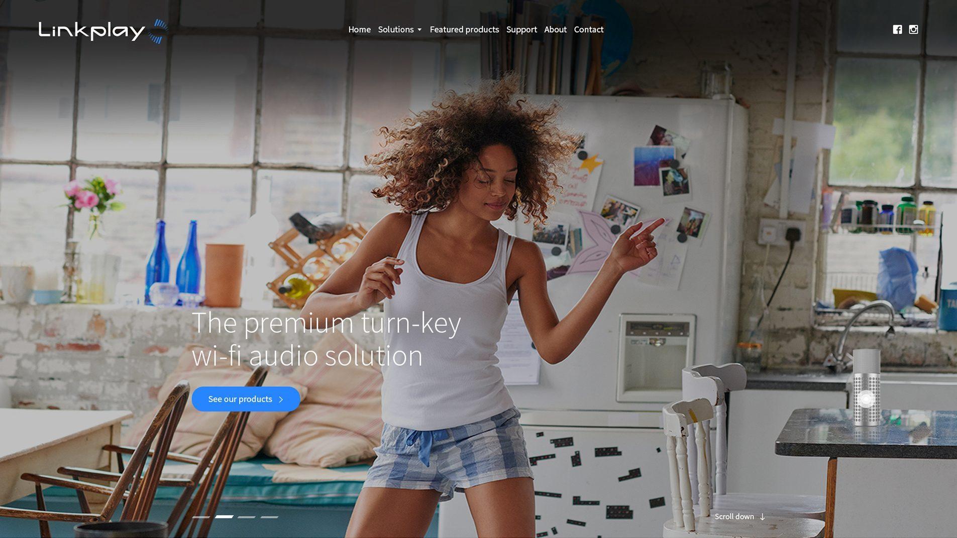 linkplay Website Design Preview