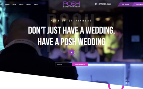 Posh DJs Web Development Preview