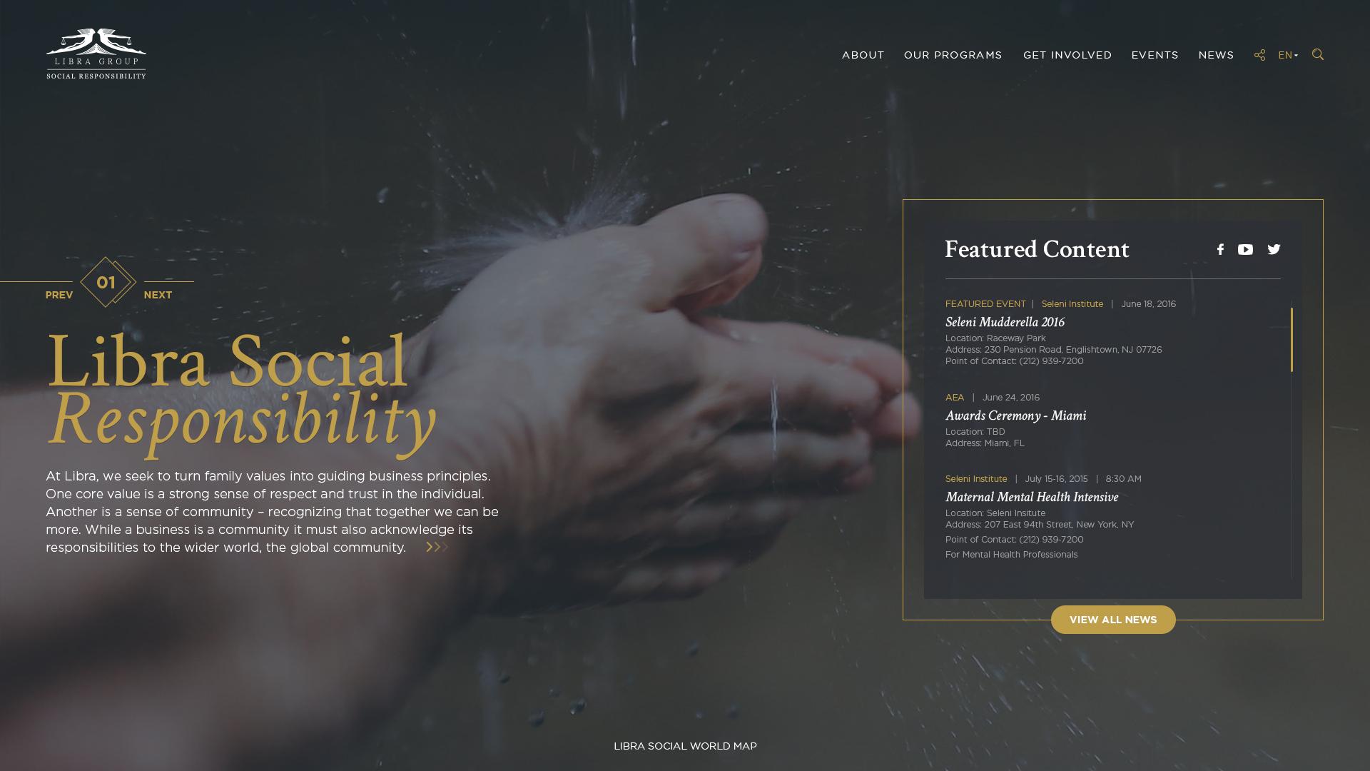 Libra group Website Design Preview