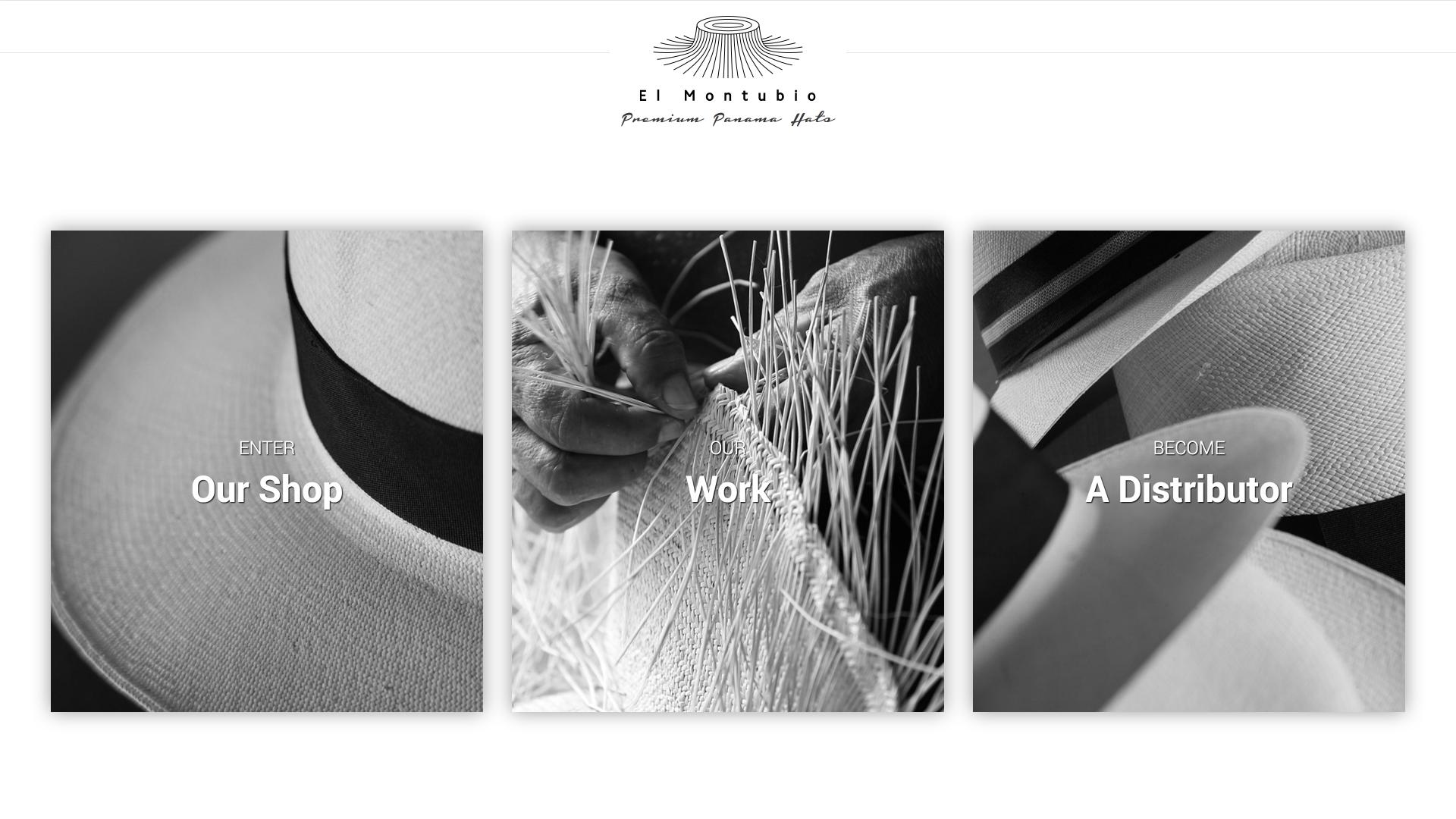 Panama Hats Website Design Preview