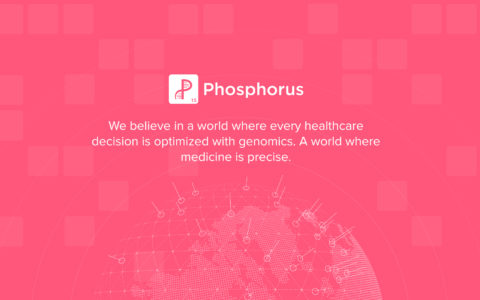 Phosphorus Web Development Preview