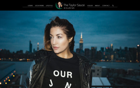 The Taylor Sauce Web Development Preview